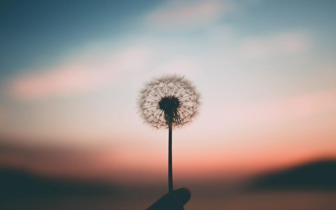 La respiration, base de la vie